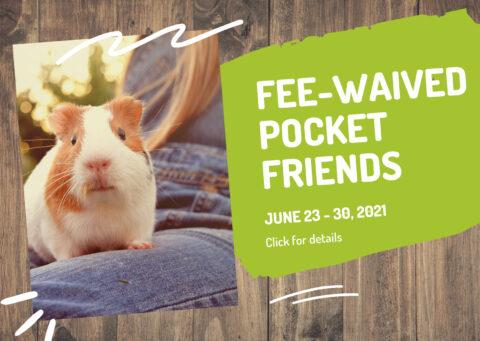 pocket pet fee-waived pop-up