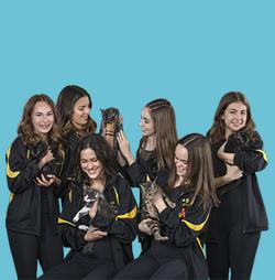 Premier Dance Academy Clearwater