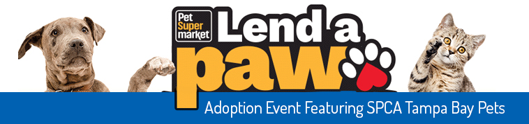 lend a paw featured