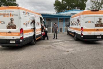 2 Ambulances standby at the ready
