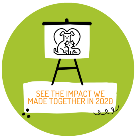 impact report 2020 button