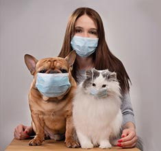 woman with dog and cat photo