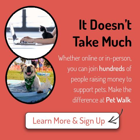 petwalk event pop up