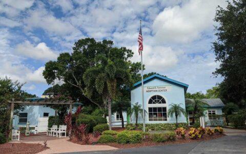 Photo of the SPCA Tampa Bay Adoption Center